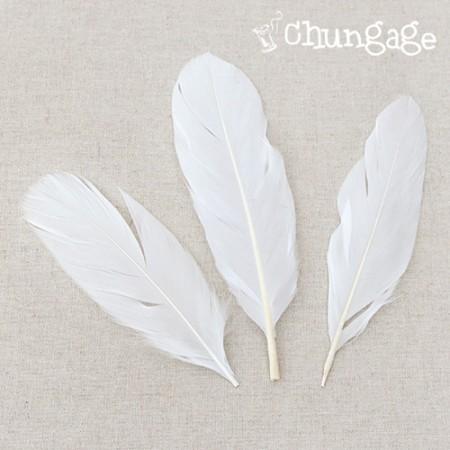 羽飾りソフトエンジェルスウィングキトトルホワイト